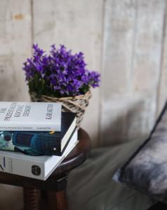 Zapowiedzi książek – listopad 2018